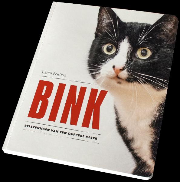 Cover van het boek BINK, belevenissen van een dappere kater
